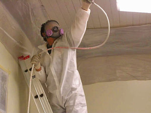 Professional Mold Inspection